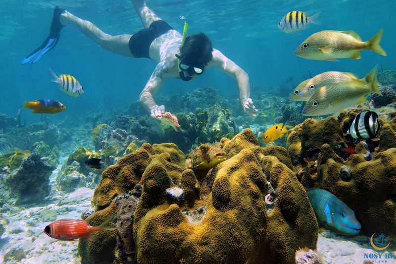 http://www.anjiamarango-beach-resort.com/wp-content/uploads/activites-marines-nosybe.jpg
